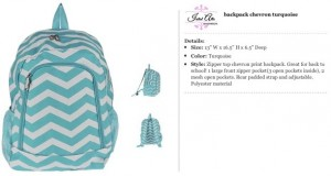 Chevron Turqoise Backpack